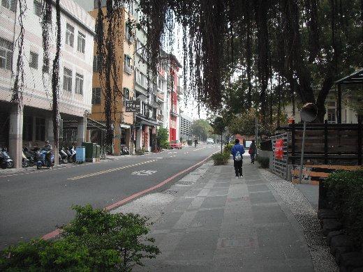 台南友愛街 - 夫妻樹