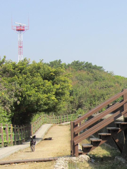 旗後砲台通往燈塔的小徑
