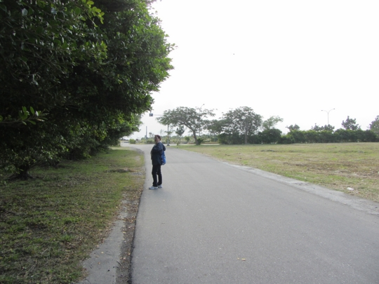 台東信義路
