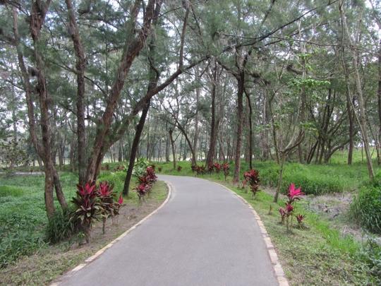 台東森林公園 山海鐵馬道