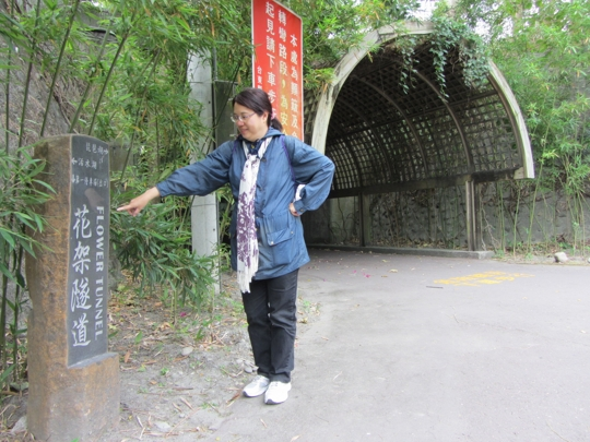 台東森林公園 花架隧道
