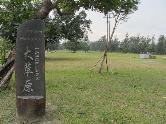 台東森林公園 大草原