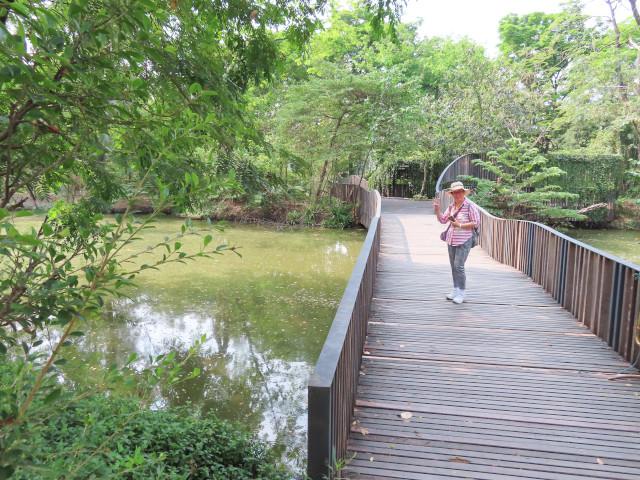 連接詩麗吉王后公園和火車公園的 Bird Wave Bridge