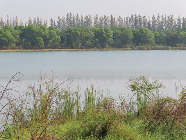Sakon Nakhon Nong Han 湖
