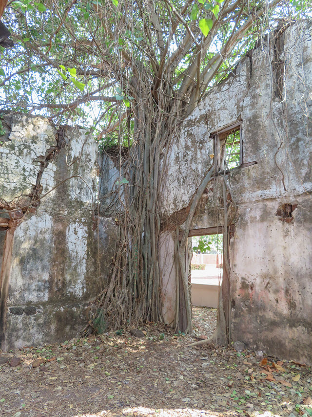 沙功那空 Sakon Nakhon 舊城區 Old Mansion